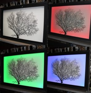 LED shadow box framing